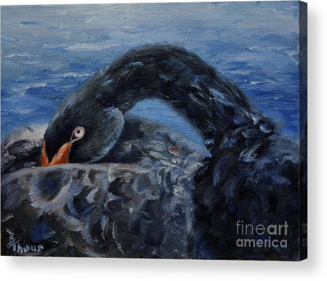 Black Swan Acrylic Print featuring the painting Black Swan by Brenda Thour