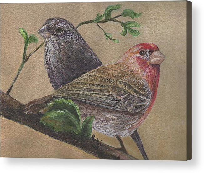 Finch Acrylic Print featuring the painting Finch Delights by Robin Gorton
