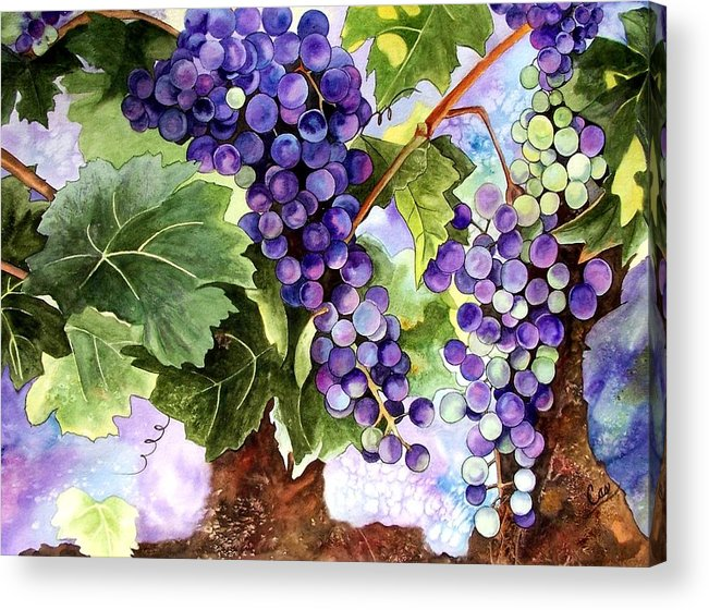 Grapes Acrylic Print featuring the painting Grape Vines by Karen Casciani
