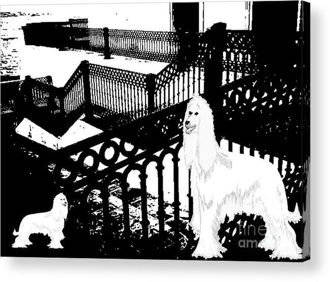 Animal Acrylic Print featuring the digital art Snow White by Belinda Threeths