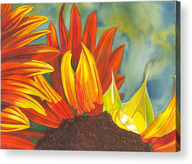 Sunflower Acrylic Print featuring the painting Ray by Catherine G McElroy