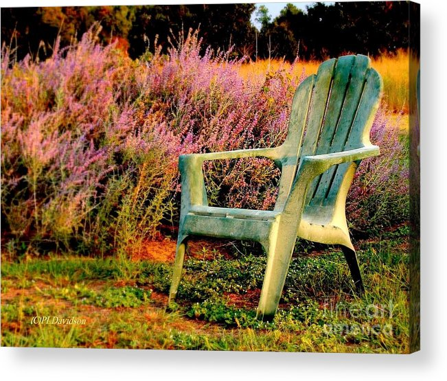 Heather Acrylic Print featuring the photograph A Visit With Heather by Patricia L Davidson