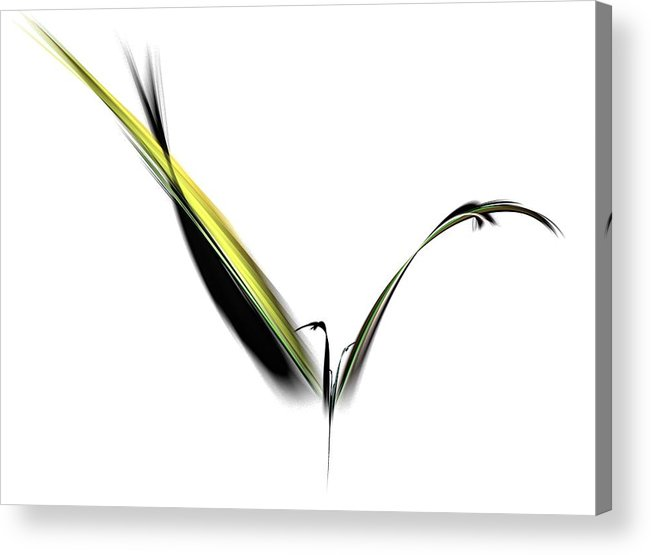 Avian Acrylic Print featuring the digital art Avian Zen - Fractal Art by NirvanaBlues