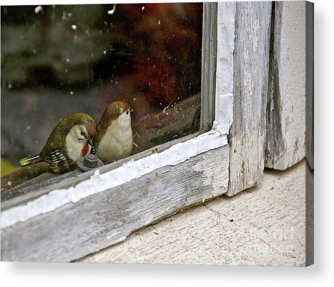 Birds Acrylic Print featuring the photograph Birds In A Window by Lori Leigh