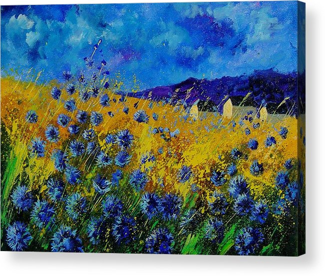 Poppies Acrylic Print featuring the painting Blue Cornflowers by Pol Ledent