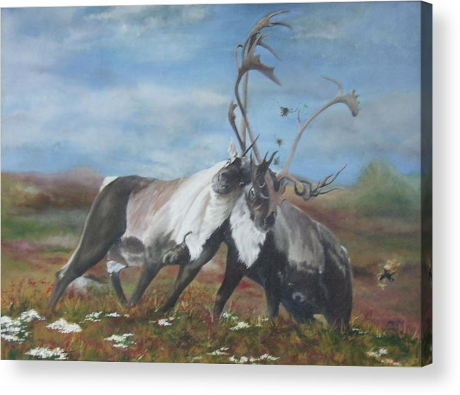 Nature Acrylic Print featuring the painting Boys Will Be Boys by Jane Simpson
