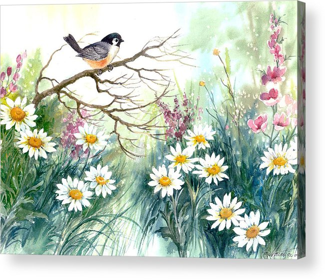 Chickadee;birds;daisies;floral;watercolor Painting; Acrylic Print featuring the painting Chickadee And Daisies by Lois Mountz