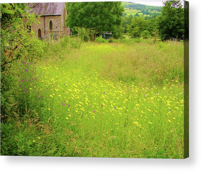 Landscape Acrylic Print featuring the digital art Collection Of Wildflowers by Stuart Parnell