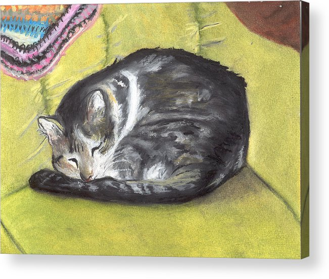 Oil Pastel Acrylic Print featuring the painting Comfortable Cat by Pamela Wilson