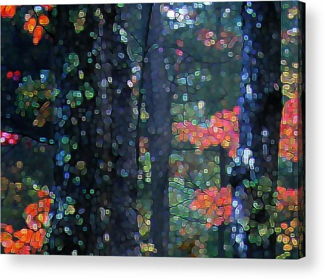 Landscape Acrylic Print featuring the digital art Deep Woods Mystery by Dave Martsolf