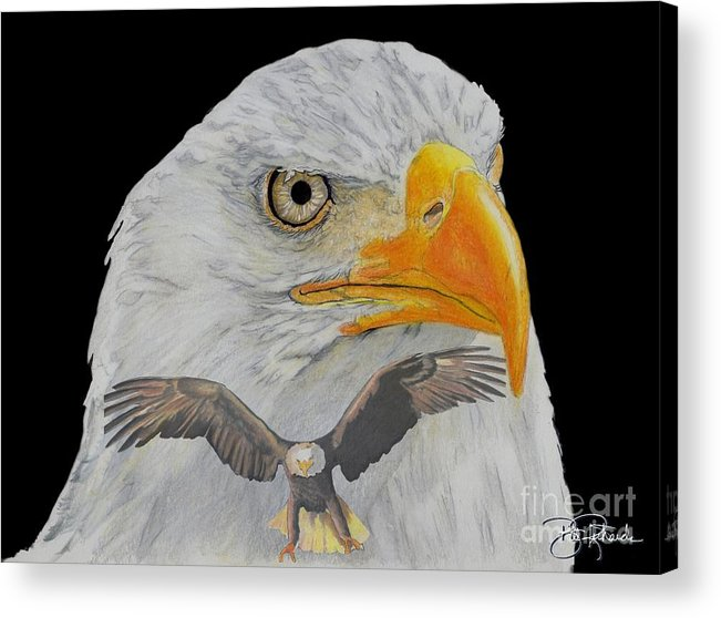 Eagle Acrylic Print featuring the drawing Double Eagle by Bill Richards