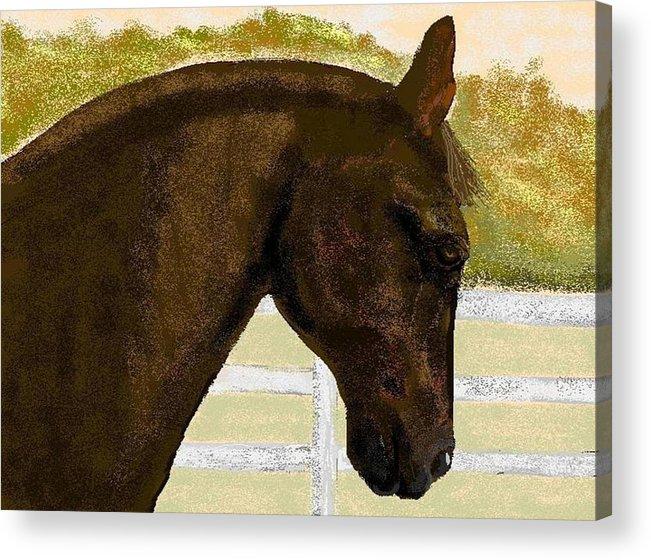 Horse Acrylic Print featuring the digital art Golden Chance by Carole Boyd