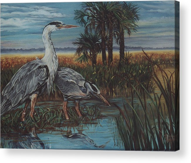 Herons Acrylic Print featuring the painting Herons by Diann Baggett
