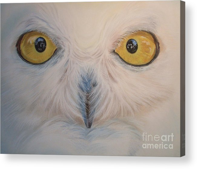 Snowy Owl Acrylic Print featuring the painting I Am Watching You by Irisha Golovnina