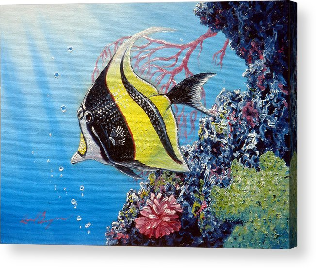 Fish Acrylic Print featuring the painting Moorish Idol by Daniel Bergren