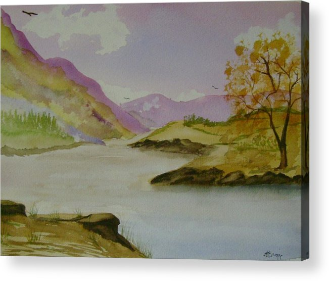 Mountains Acrylic Print featuring the painting Mountain River by Dottie Briggs