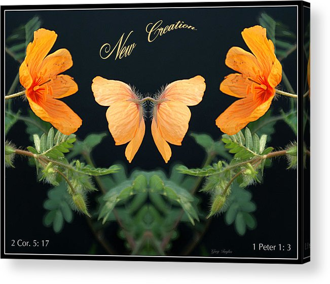 New Creation Acrylic Print featuring the photograph New Creation by Greg Taylor