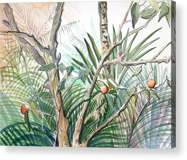 Fruit Acrylic Print featuring the painting Orange Tree by Mindy Newman