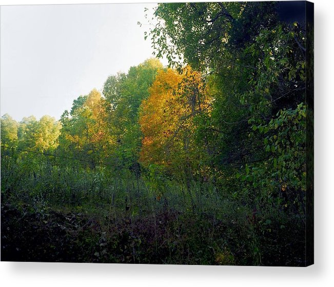 Autumn Acrylic Print featuring the photograph Sand Gap Hillside by George Ferrell