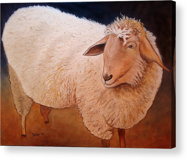 Animal Acrylic Print featuring the painting Shaggy Sheep by Scott Plaster