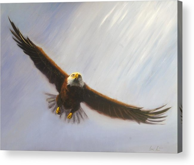 Oil Acrylic Print featuring the painting Soaring Eagle by Greg Neal