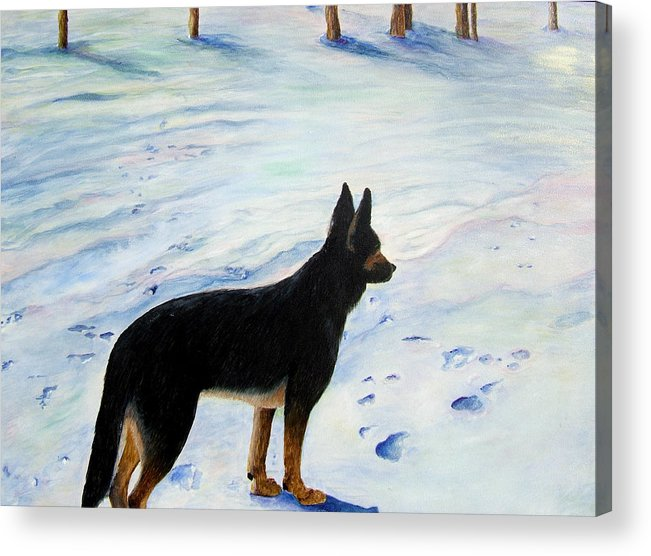 German Shepherd Acrylic Print featuring the painting Sounds Of Silence by JoLyn Holladay