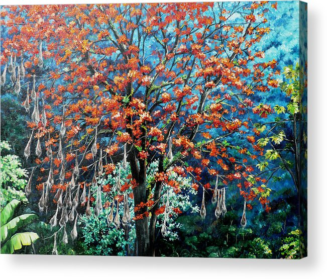 Tree Painting Mountain Painting Floral Painting Caribbean Painting Original Painting Of Immortelle Tree Painting  With Nesting Corn Oropendula Birds Painting In Northern Mountains Of Trinidad And Tobago Painting Acrylic Print featuring the painting The Mighty Immortelle by Karin Dawn Kelshall- Best