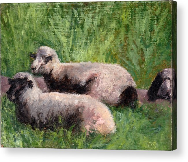 Animals Acrylic Print featuring the painting The Sheep Are Resting by Chris Neil Smith