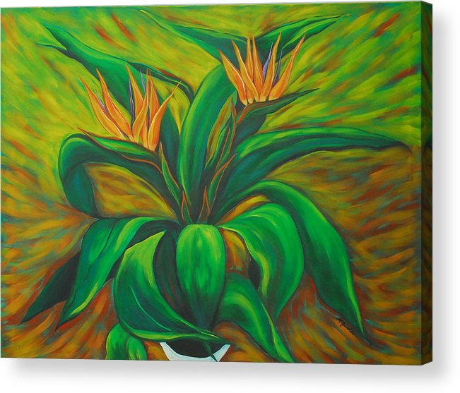 Contemporary Abstract Acrylic Print featuring the painting Bird Of Paradise by Marta Giraldo