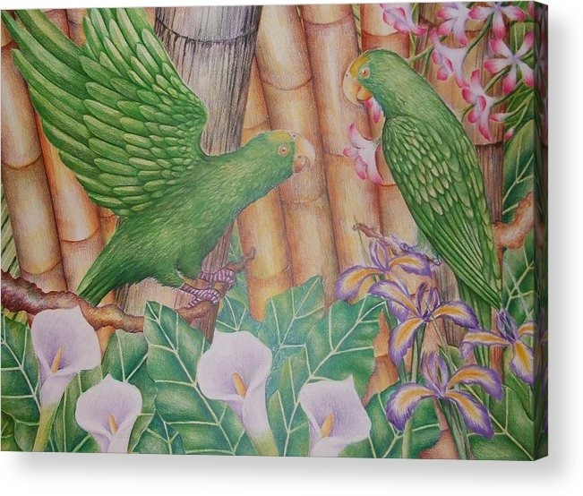 Landscape Acrylic Print featuring the drawing Two Perrots by Jubamo