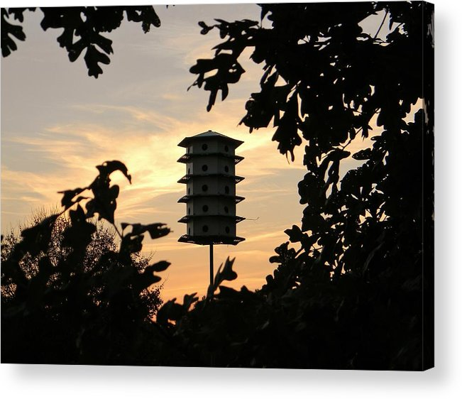 Sunset Acrylic Print featuring the photograph A Home Among The Trees by Jean Goodwin Brooks