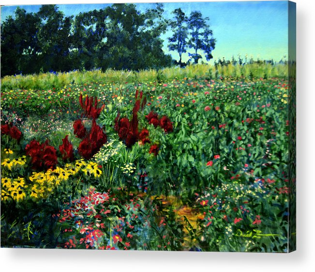 Landscape Paintings Paintings Acrylic Print featuring the painting Black Eyed Susans Part 2 by David Zimmerman