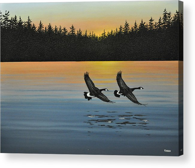 Canada Geese. Bireds Acrylic Print featuring the painting Canada Geese by Kenneth M Kirsch