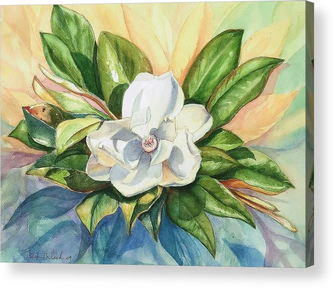 Magnolia Acrylic Print featuring the painting Floating Magnolia by Trish Bilich