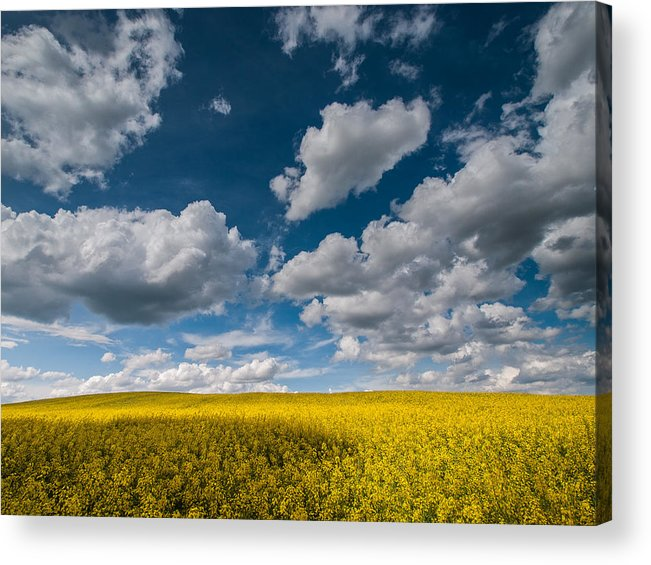 Landscapes Acrylic Print featuring the photograph Happiness by Davorin Mance
