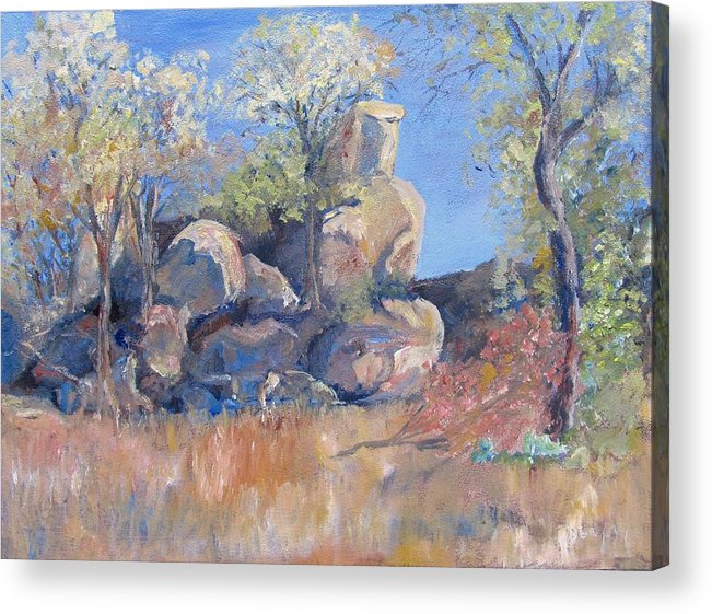 Nature Acrylic Print featuring the painting Klipspringer Hideaway by Liz McQueen