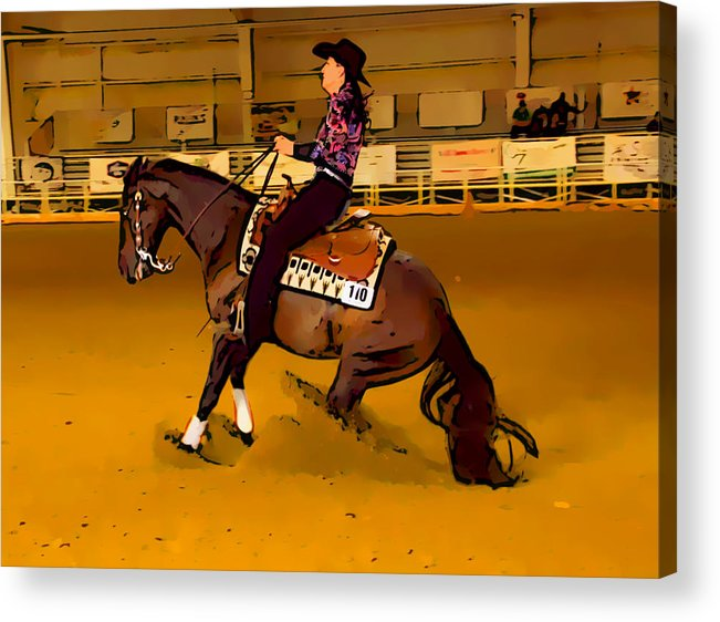 Horse Acrylic Print featuring the photograph Lady Slide by Alice Gipson