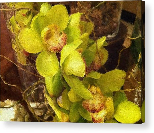 Orchid Prints Acrylic Print featuring the painting Orchid Flourish by Lyn Pacific