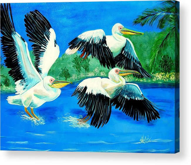 Pelican Acrylic Print featuring the painting Pelican Trio by Kathern Welsh