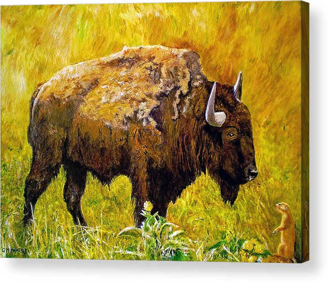 Buffalo Acrylic Print featuring the painting Prairie Companions by Michael Durst