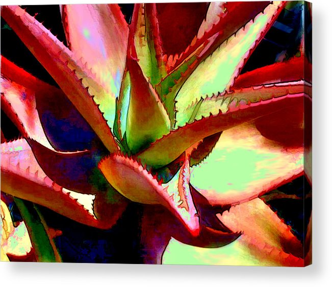 Cactus Acrylic Print featuring the painting Technicolored Agave Succulent by Elaine Plesser