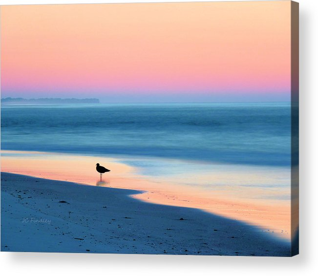 Beach Acrylic Print featuring the photograph The Day Begins by JC Findley
