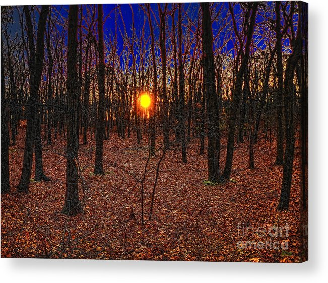 Autumn Acrylic Print featuring the photograph Unenchanted Forest by Jeff Breiman