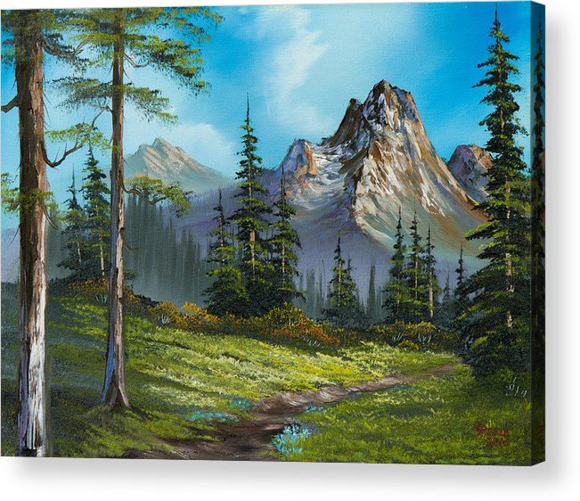 Landscape Acrylic Print featuring the painting Wilderness Trail by C Steele