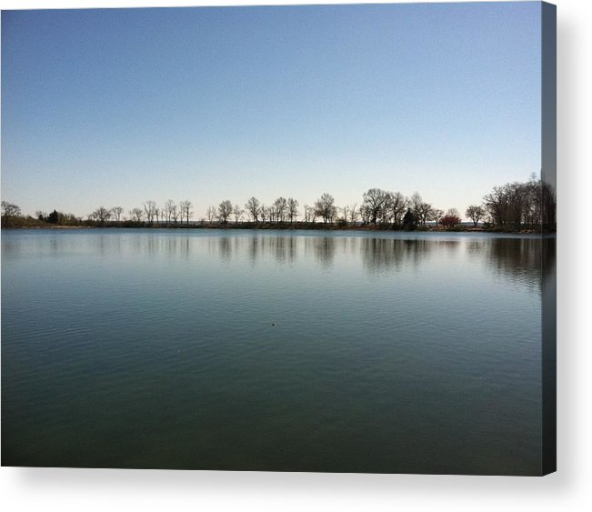 Sky Acrylic Print featuring the sculpture Blue Day by David Stich