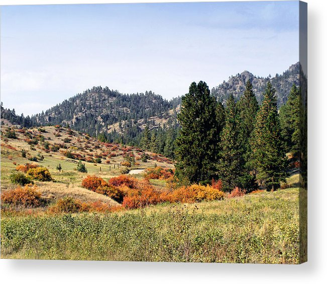 Deerborn Montana Acrylic Print featuring the photograph Deerborn Fall by Susan Kinney