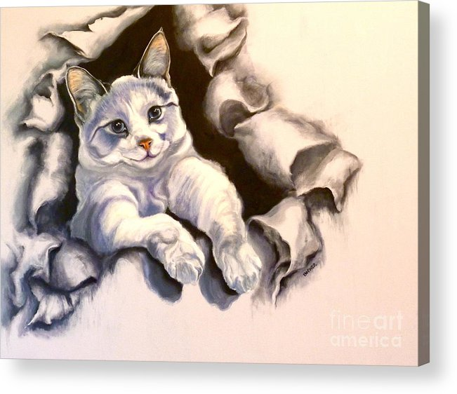 Cat Acrylic Print featuring the painting Paper Tiger by Susan A Becker