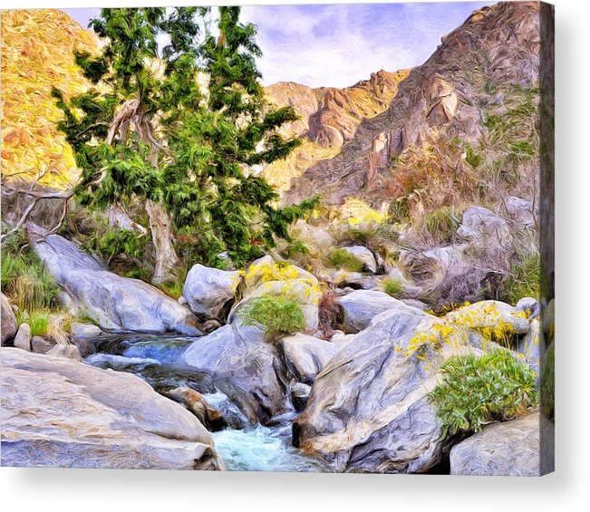 Shady Oasis Acrylic Print featuring the painting Shady Oasis by Dominic Piperata