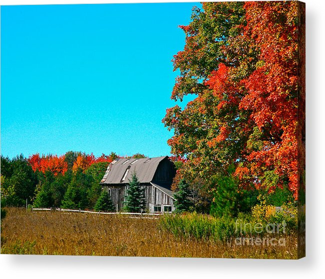 Old Barn Acrylic Print featuring the photograph Old Barn In Fall Color by Robert Pearson