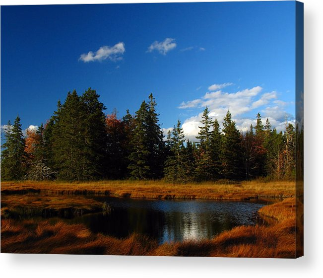 Landscape Acrylic Print featuring the photograph Mount Desert Island by Juergen Roth